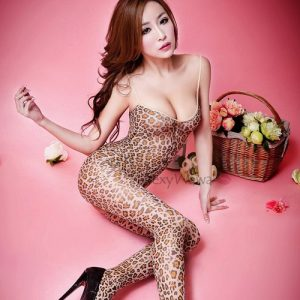 Sexy Leopard Pantyhose Body Stocking SKB017