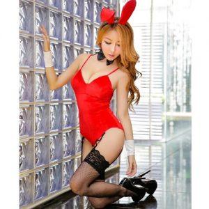 Sexy Bunny Rabbit Costume AN006RD
