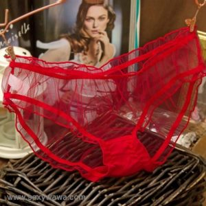 Red Transparent Sexy Panties G-String GS033RD
