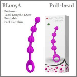 BL005A Beginner