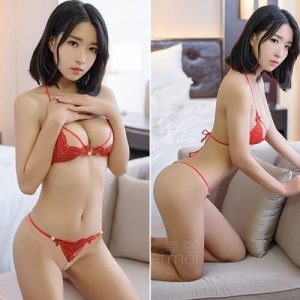 Sexy Lace Bikini Top Bra & Panties BK024RD