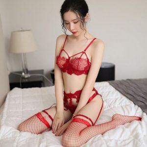 Sexy Bikini Set With Garter Belt & Stocking BK033RD