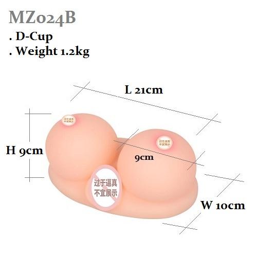 MZ024B ( D-Cup Dimension )