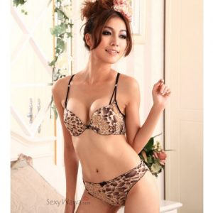 Leopard Sexy Lace Front Buckle Bra & Panties BS006